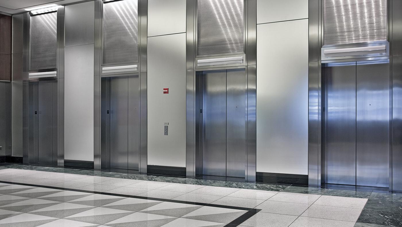 современный лифт фото приобретая породистого любимца